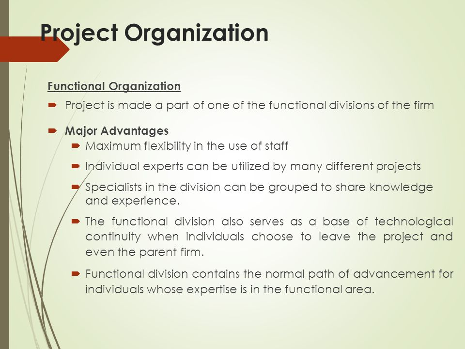 Project Organization Functional Organization