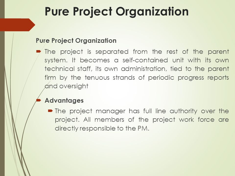 Pure Project Organization