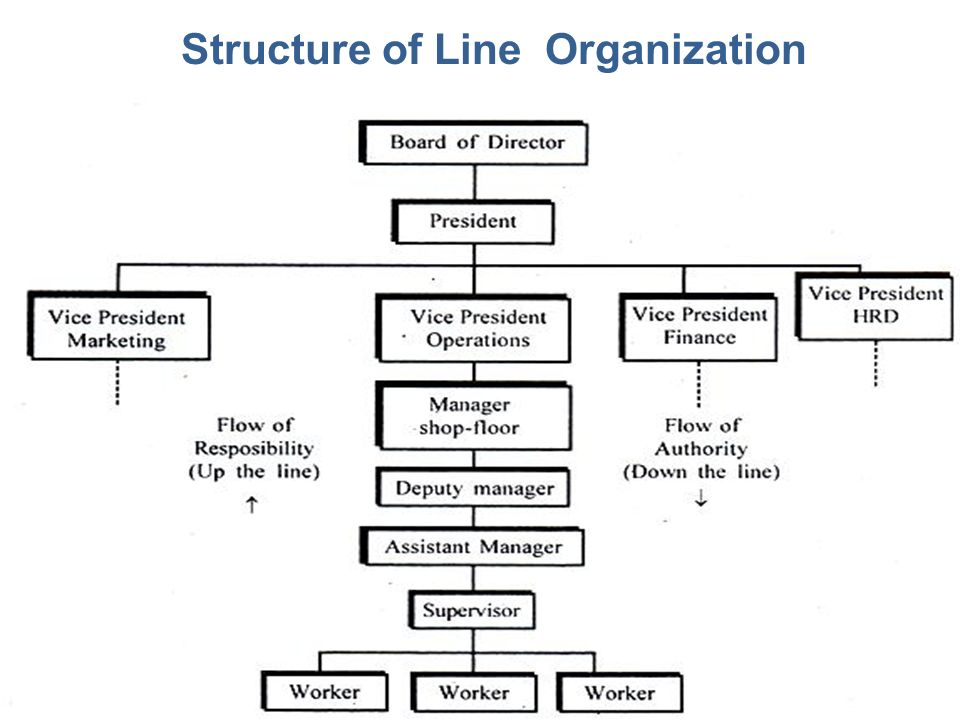 Structure of Line Organization