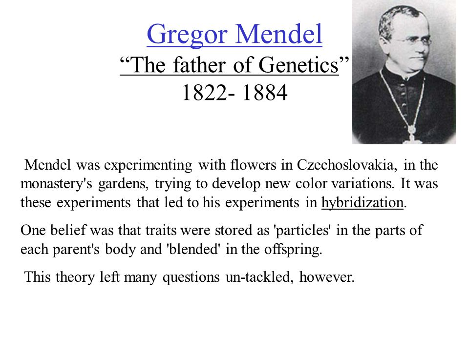 gregor mendel for kids essay Gregor mendel 1 pages 367 words  gregor mendel gregor mendel was born july 22, 1822 and died january 6, 1884 mendel was born in heizendorf, austria.