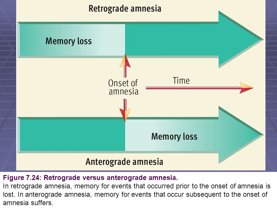 anterograde amnesia Three emerging strands of evidence are helping to resolve the causes of the  anterograde amnesia associated with damage to the diencephalon first, new.
