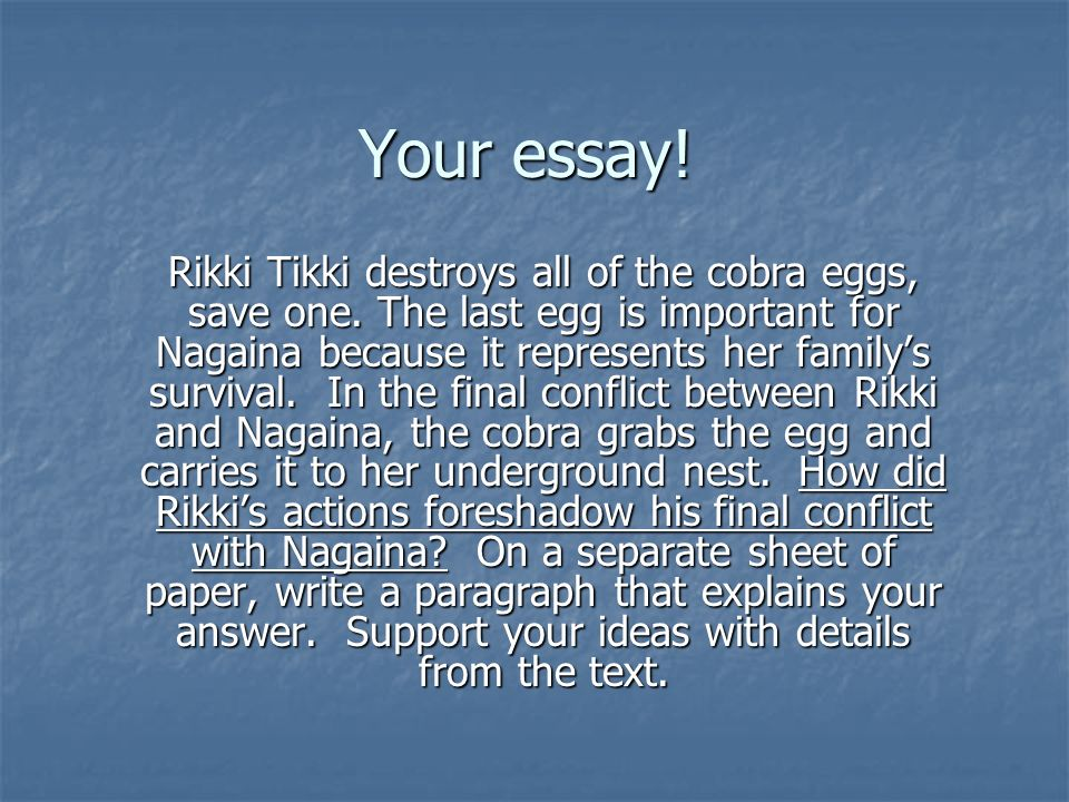 rikki tikki tavi review ppt video online  your essay