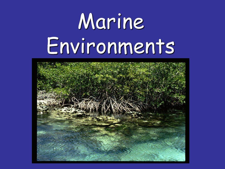Marine Environments