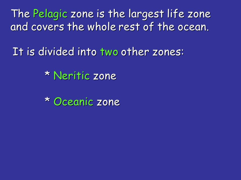 The Pelagic zone is the largest life zone and covers the whole rest of the ocean.