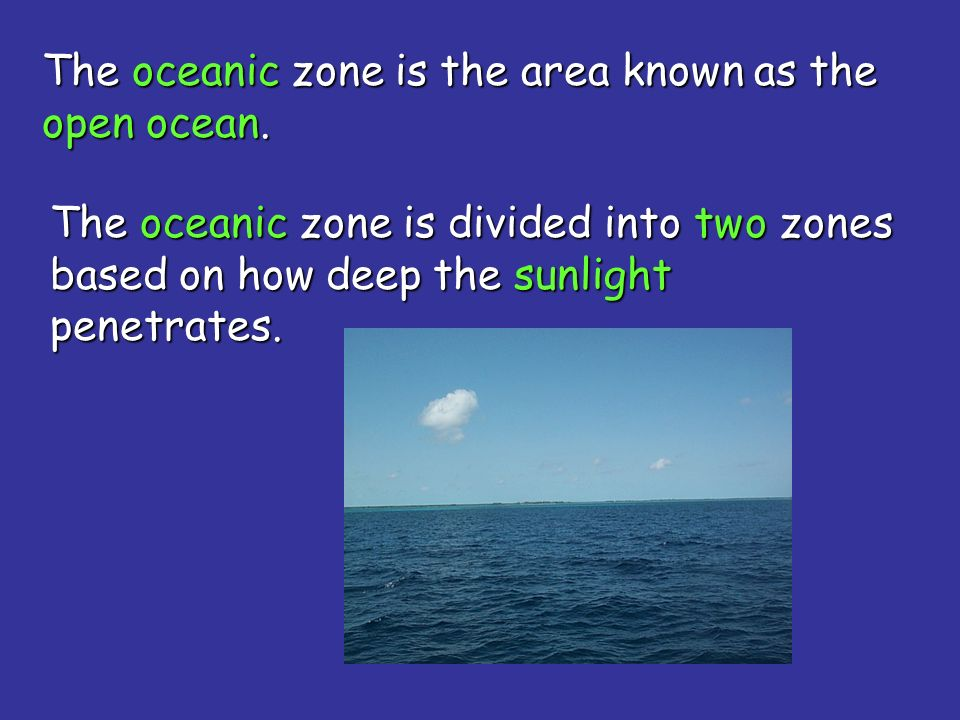 The oceanic zone is the area known as the open ocean.