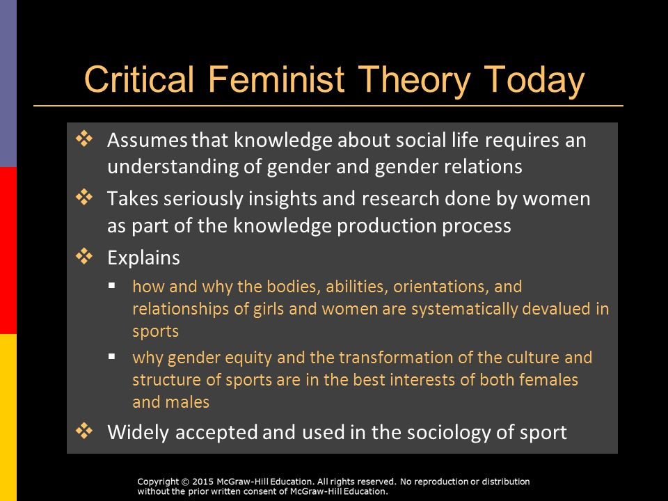 An analysis of theories of sport mirroring society