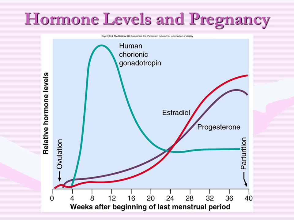how to lower prolactin levels to get pregnant