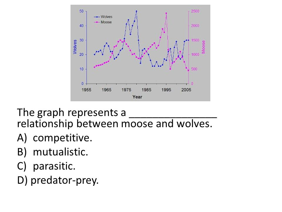 moose and wolf predator prey relationship diagram