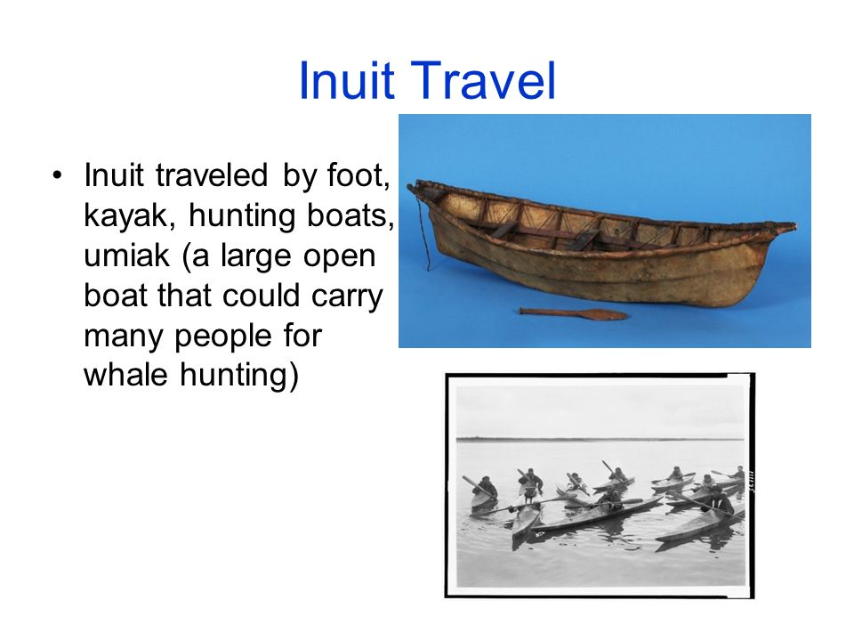 10 Inuit Travel Traveled By Foot Kayak Hunting Boats Umiak A Large Open Boat That Could Carry Many People For Whale