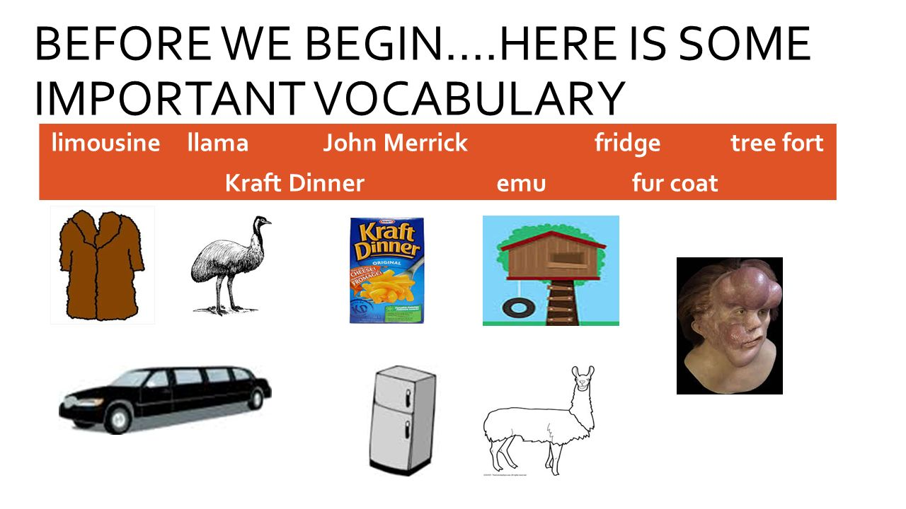 BEFORE WE BEGIN….HERE IS SOME IMPORTANT VOCABULARY