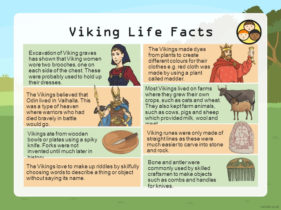 the history of vikings and the lives they lived History the vikings  comprehensive site on most aspects of viking life covers who they were, their sea skills, their warrior nature, their towns and much more .