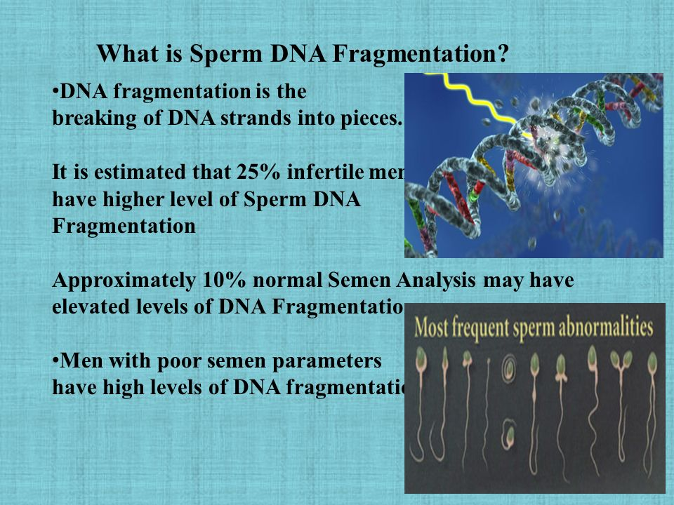 Dissappointing thing Dna fragmentation and sperm