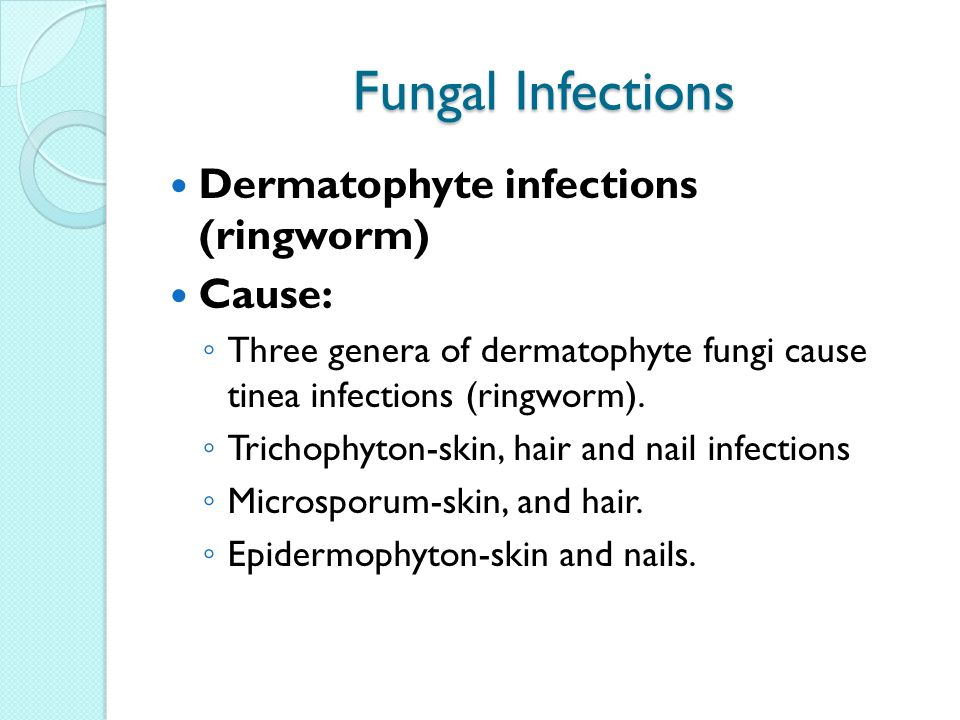 Fungal infections dermatophyte infections ringworm cause ppt fungal infections dermatophyte infections ringworm cause ccuart Image collections