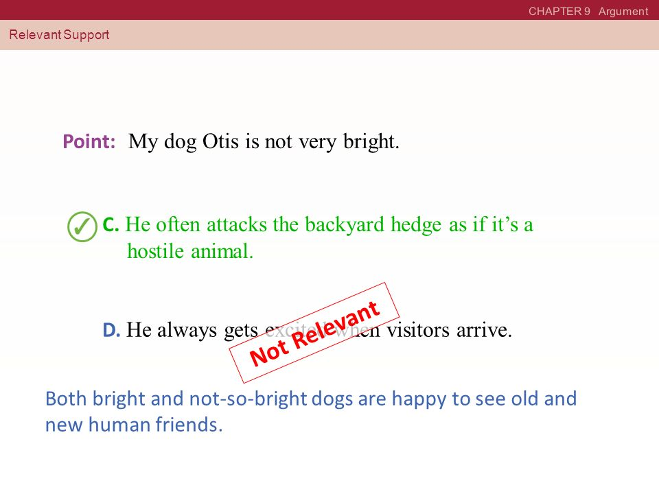 Not Relevant Point: My dog Otis is not very bright.