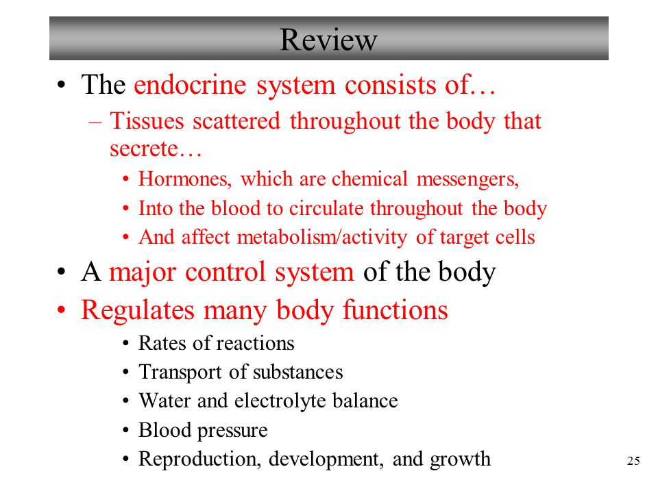 endocrine system endocrine system review Chapter 22: the endocrine system  fna is the procedure of choice to collect a  specimen for microscopic review to distinguish benign from malignant thyroid.