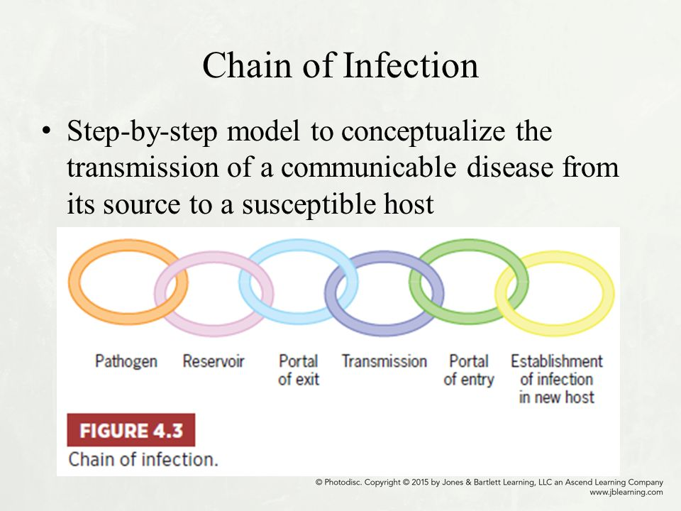 chains of infections The chain of infection 1the various ways infection can be transmitted 2 the ways the infection chain can be broken as healthcare professionals, it is important to.