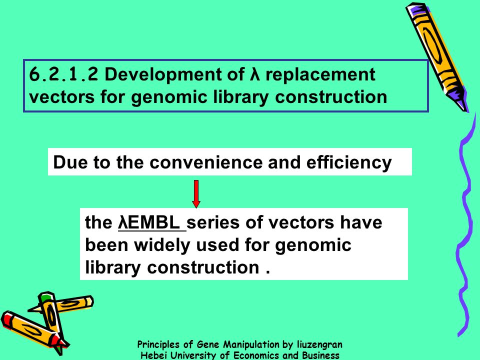 genomic library construction - photo #25