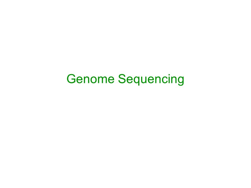 genome sequencing approaches Nanopore dna sequencing: new approaches to an old challenge in the fast-paced world of dna sequencing, nanopores are all the rage by steven benowitz.