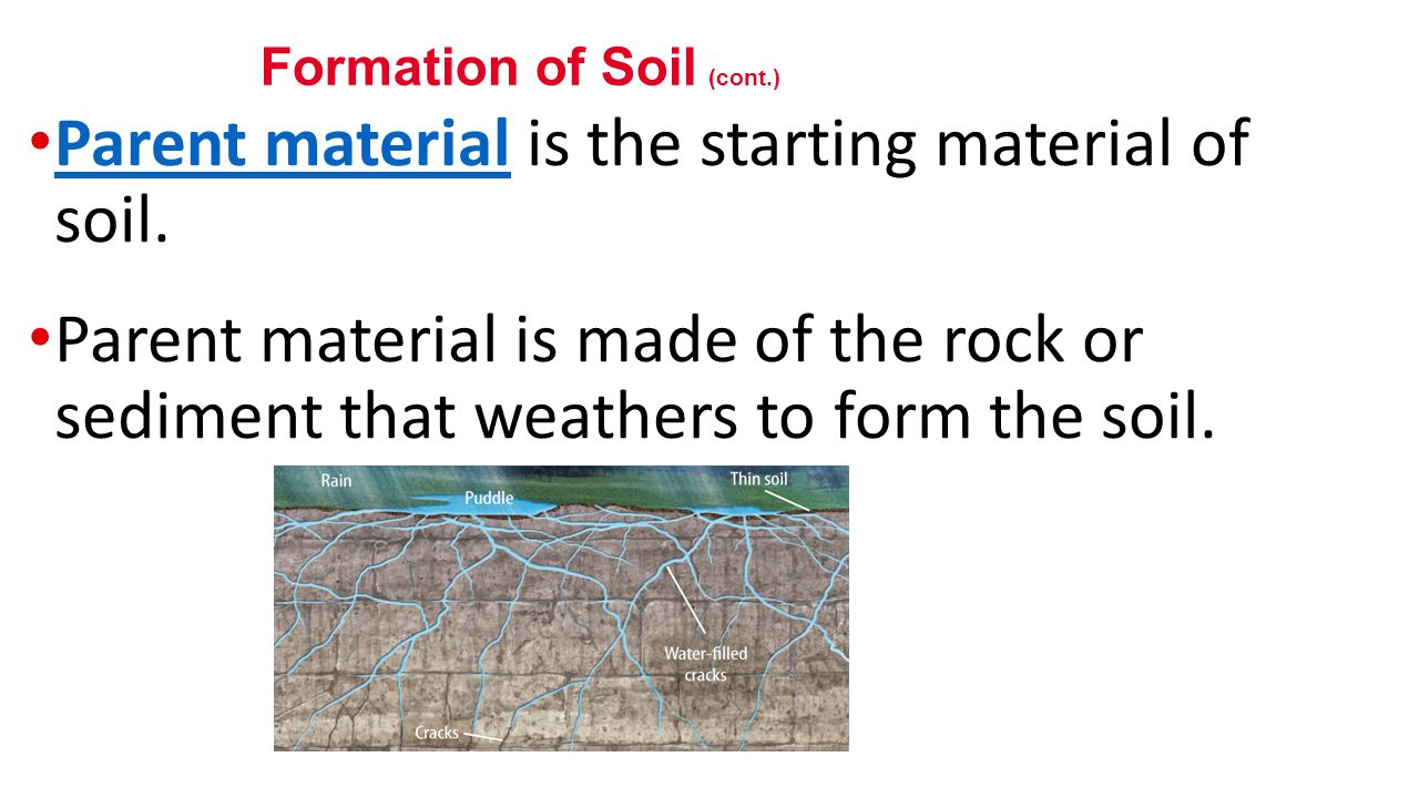 Weathering and its effects ppt video online download for Soil is made of