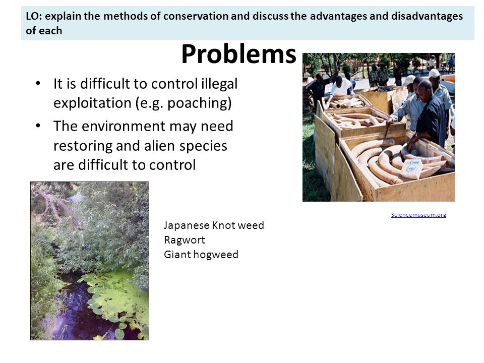 discuss the advantages and disadvantages of It has advantages and disadvantages, and these things will not disappear people just need to know how to reap its benefits and reduce its risks people must understand its impact globally, and work altogether to remedy the problems that may arise in the future.