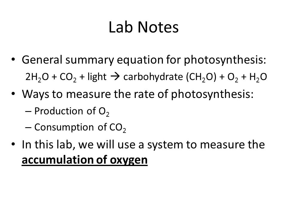 co2 consumption rate photosynthesis lab Lab 7 – photosynthesis from the environment such as carbon dioxide (co 2) exercise 1 – observing photosynthesis via co 2 consumption 1.
