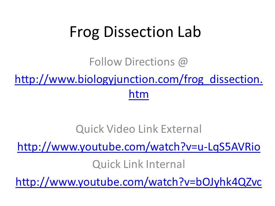 Frog external anatomy lab answers