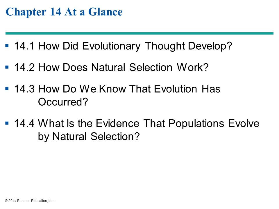 the debate about how evolution occurred and proof of evolution The cambrian explosion was a period of rapid diversification that evidence in texas, evolution dr mcleroy, the board chairman, sees the debate.