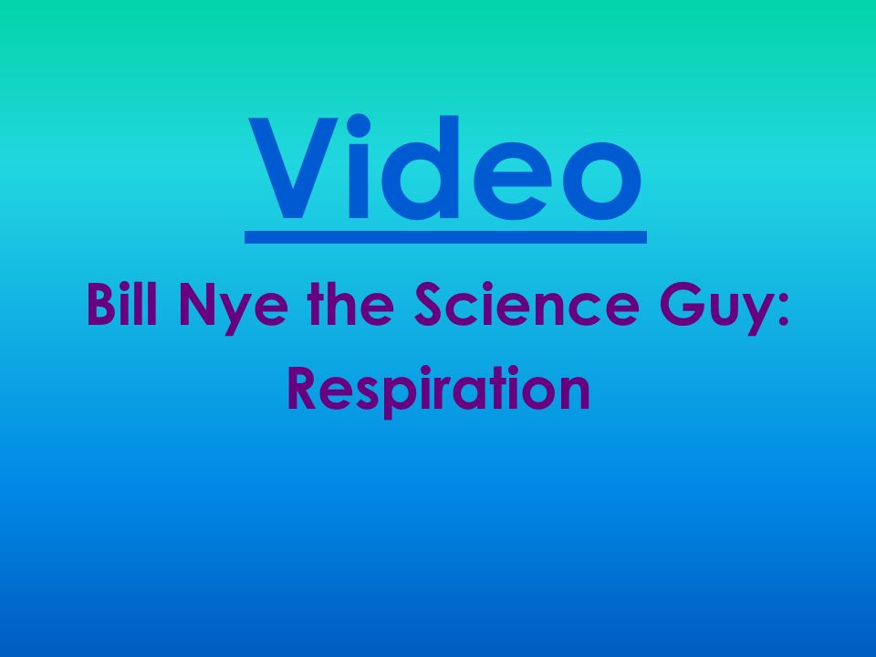 body systems respiratory system ppt video online download. Black Bedroom Furniture Sets. Home Design Ideas