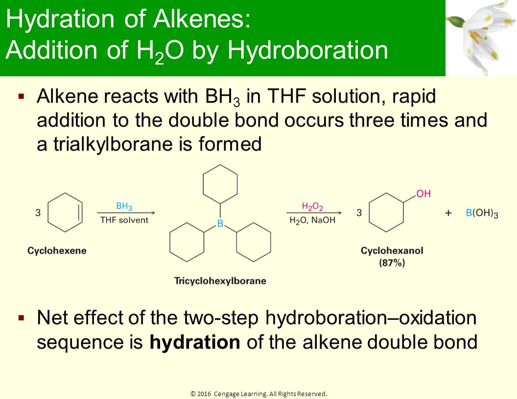 alkene hydration hexanol lab report View lab report - lab 08 synthesis of cyclohexene-an e2 reaction lab 08 synthesis of cyclohexene-an oh h 1-hexene 2-hexanol the addition of water to an alkene.