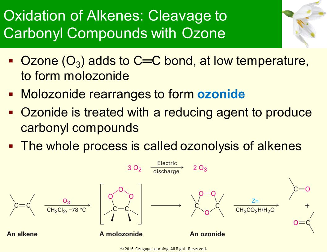 chaper 6 rxn alkenes lecture notes Alkenes, alkynes and aromatic compounds chapter introduction an alkene is a hydrocarbon with a double c bond that looks like c=c an alkyne is a hydrocarbon with a.