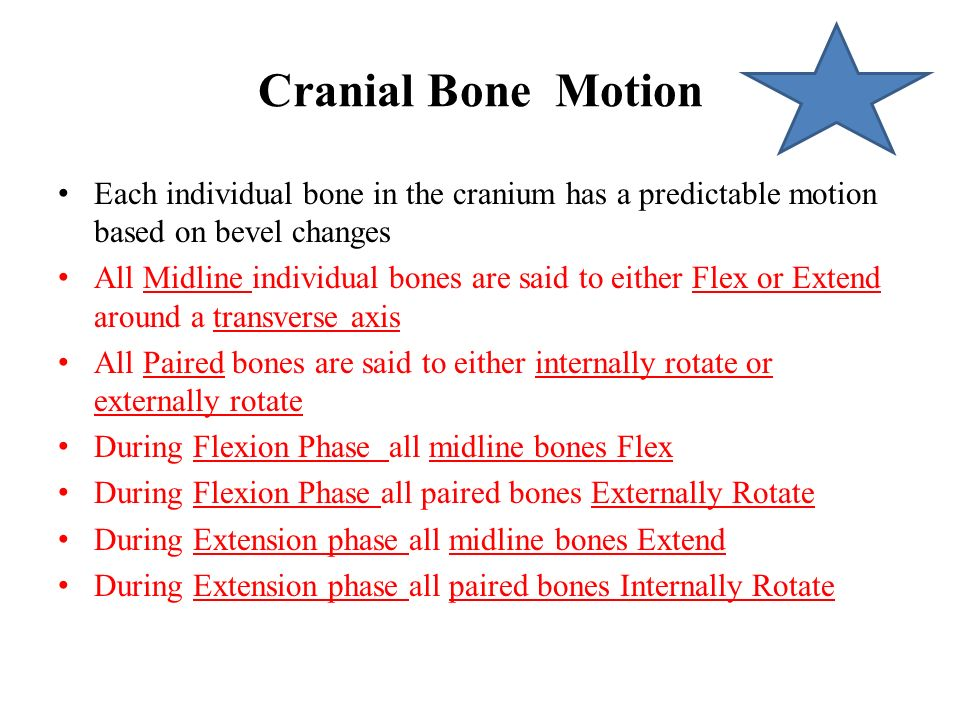 Cranial Bone Motion Each individual bone in the cranium has a predictable motion based on bevel changes.