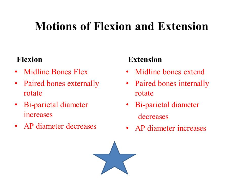 Motions of Flexion and Extension