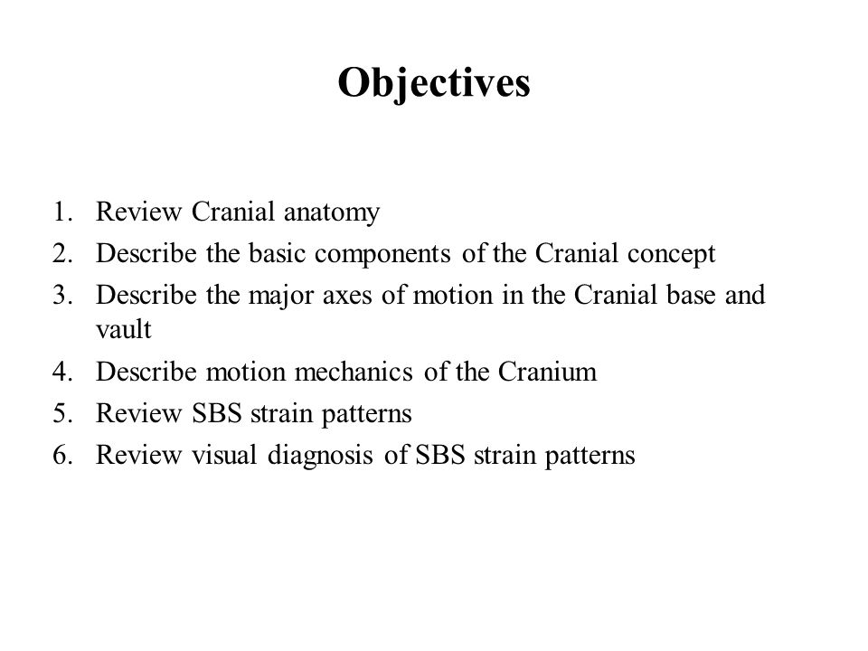 Objectives Review Cranial anatomy