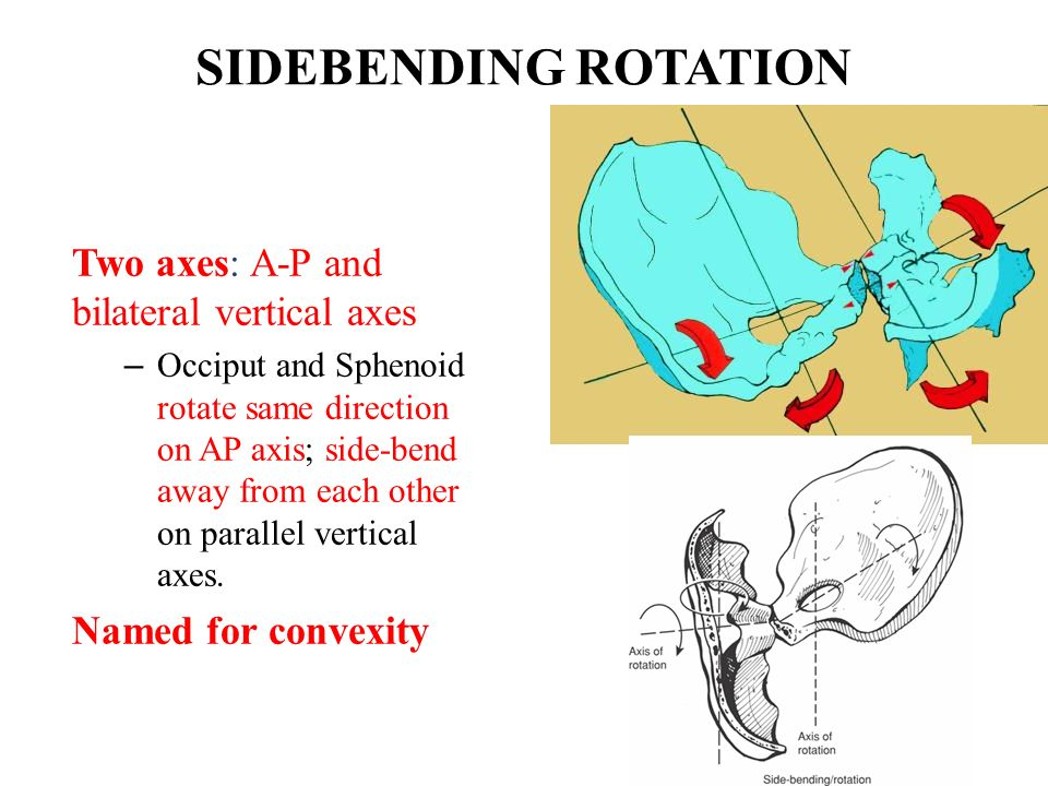 SIDEBENDING ROTATION Two axes: A-P and bilateral vertical axes