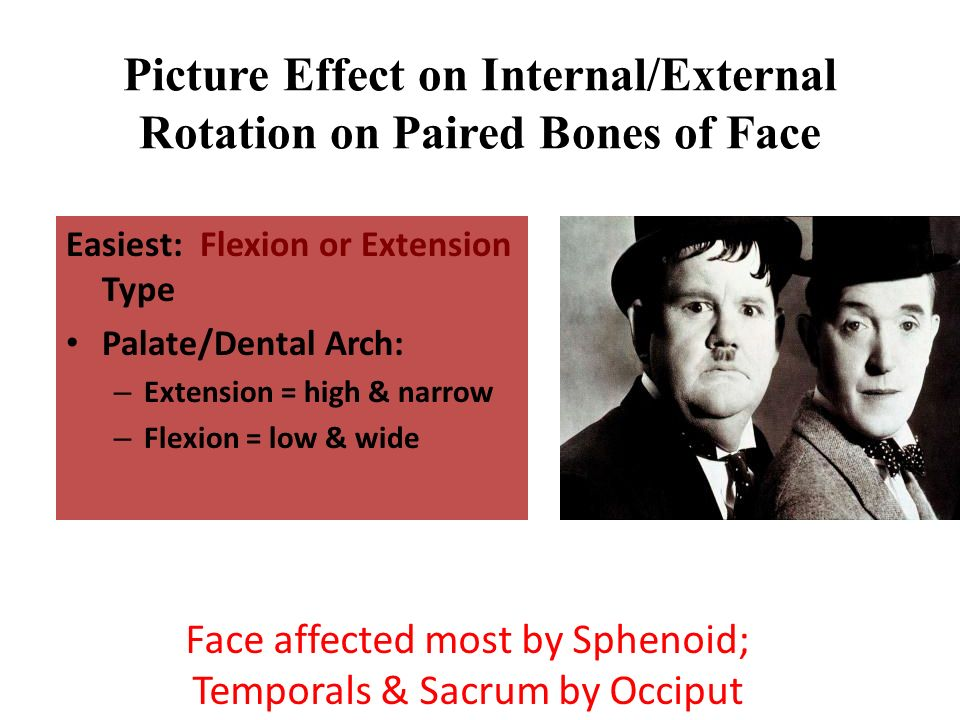 Picture Effect on Internal/External Rotation on Paired Bones of Face