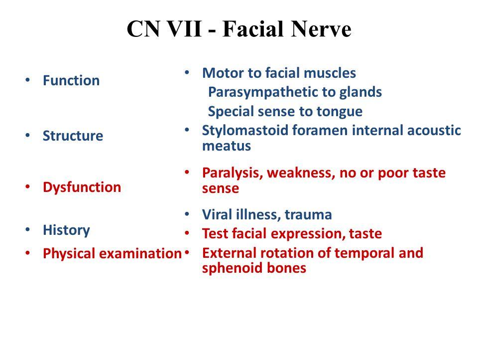 CN VII - Facial Nerve Motor to facial muscles Function