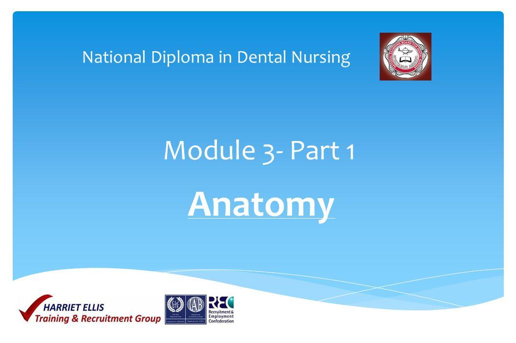 National Diploma in Dental Nursing - ppt video online download