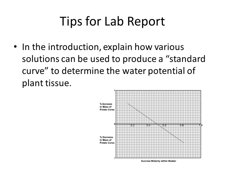 potato water potential Exercise 3: water potential of potato cores this activity is very similar to exercise 2, except that you use cores from potatoes instead of dialysis bags you submerge the cores in solutions of varying sucrose concentrations.