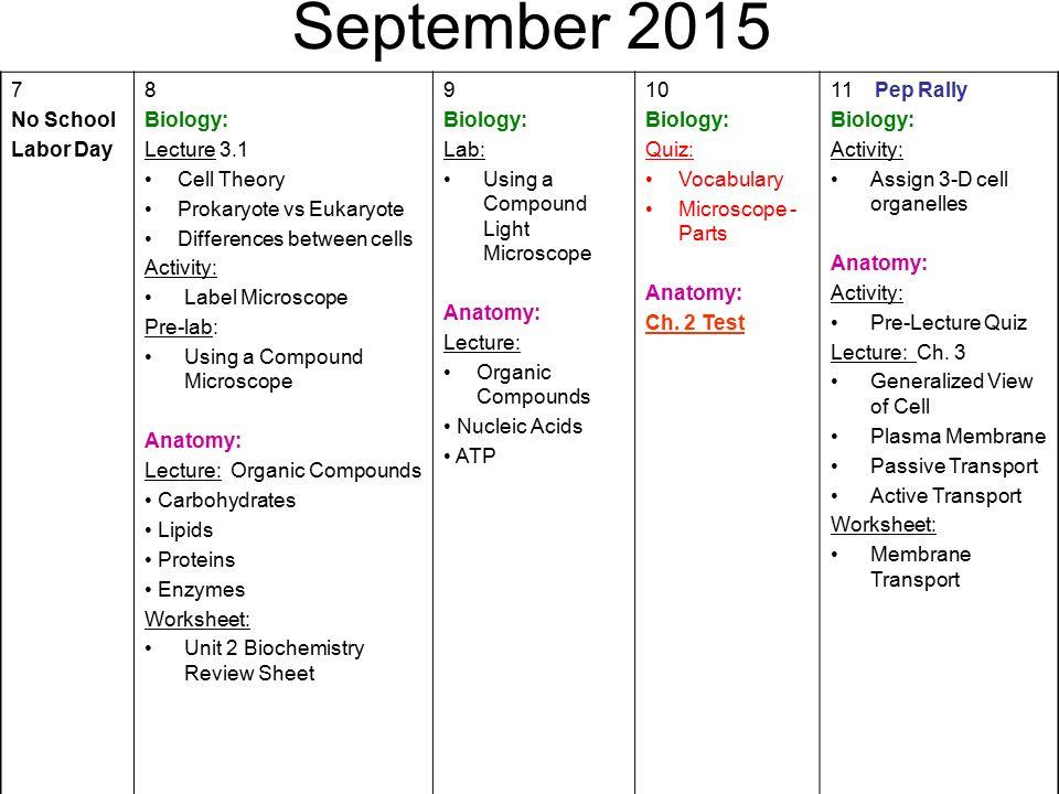 pdf Kognitive Verhaltenstherapie bei medizinisch
