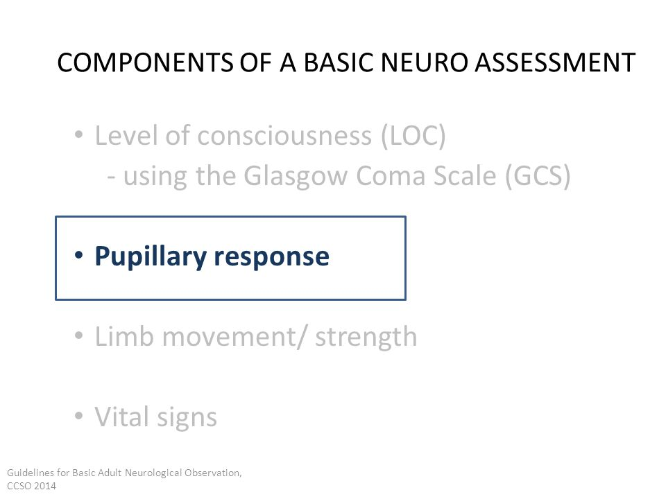 adult neurological population screening