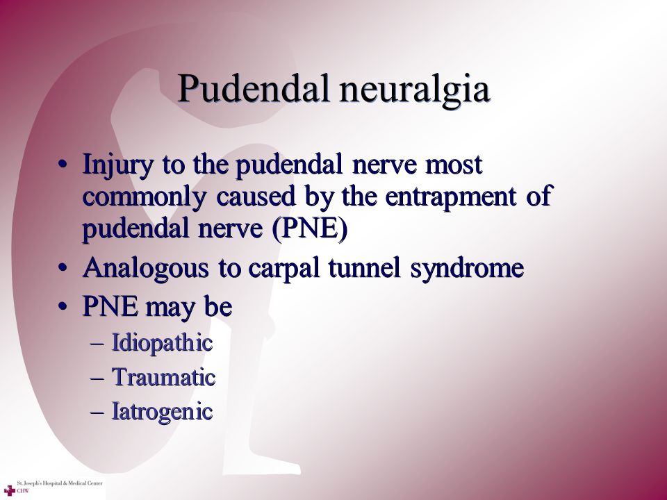 Pudendal Nerve Entrapment Ppt Video Online Download