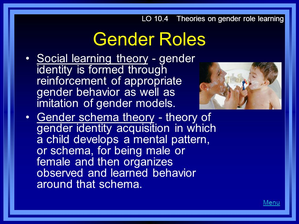 LO 10.4 Theories on gender role learning