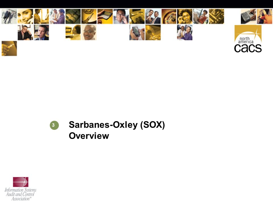 sarbanes oxley overview Oku «the sarbanes- oxley act  the paper gives an overview of the provisions of the sarbanes- oxley act this overview deals with every single provision and.