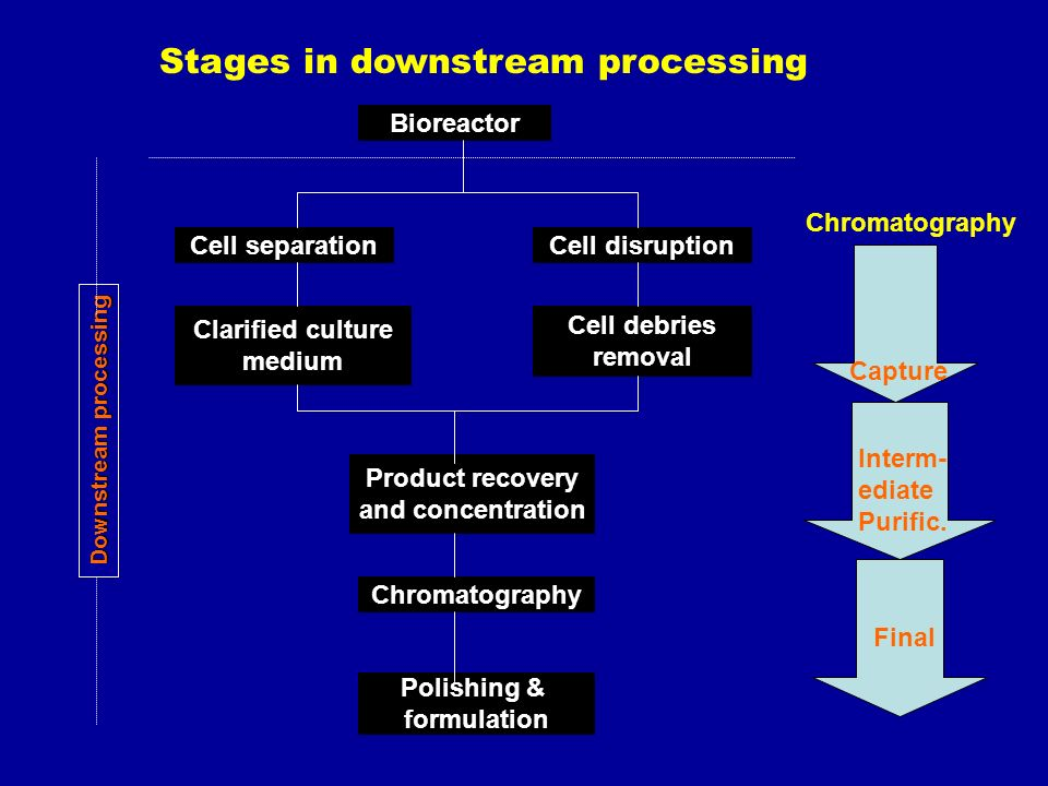 downstream processing Downstream processing market growth mainly fuel by the increasing demand for biopharmaceutical products but the lack of skilled personnel and high costs involved in procuring instruments is restraining the growth of downstream processing market.