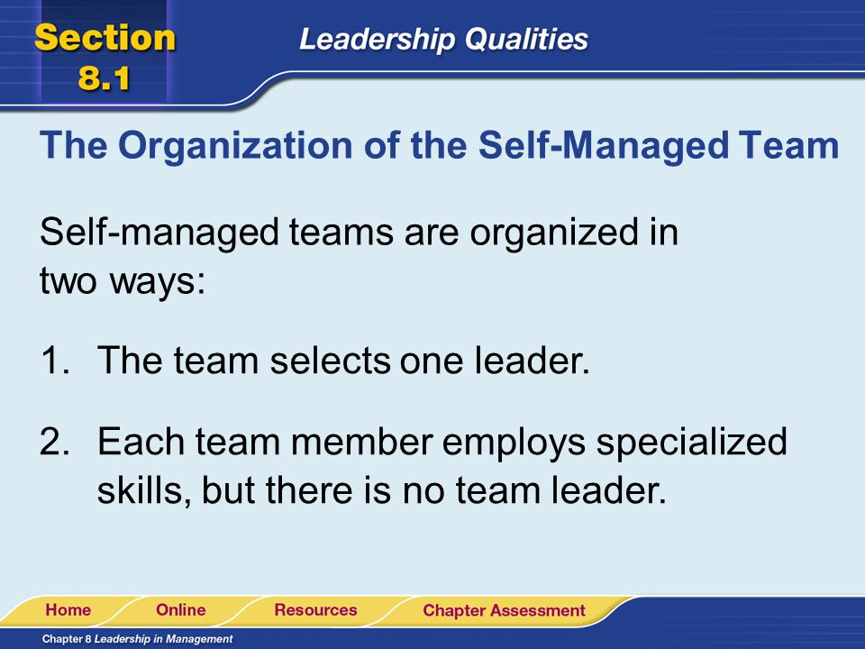 The Organization of the Self-Managed Team
