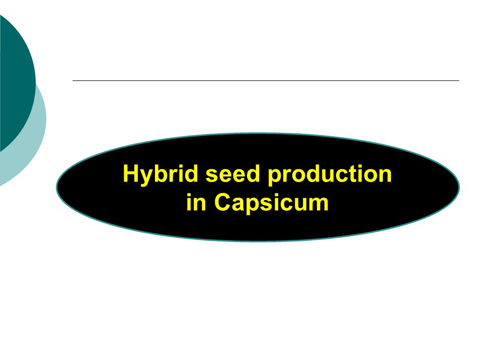 hybrid seed production Several prerequisites must be fulfilled for commercial hybrid seed production  first, for self-pollinating (autogamous) species, self-pollination of.