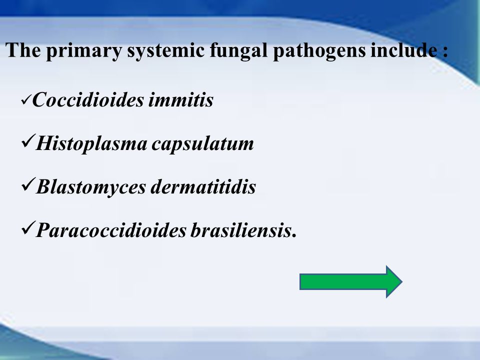 primary fungal pathogens 2011-6-13 primary fungal pathogens of humans can also infect other mammals, such as domesticated livestock and companion animals.