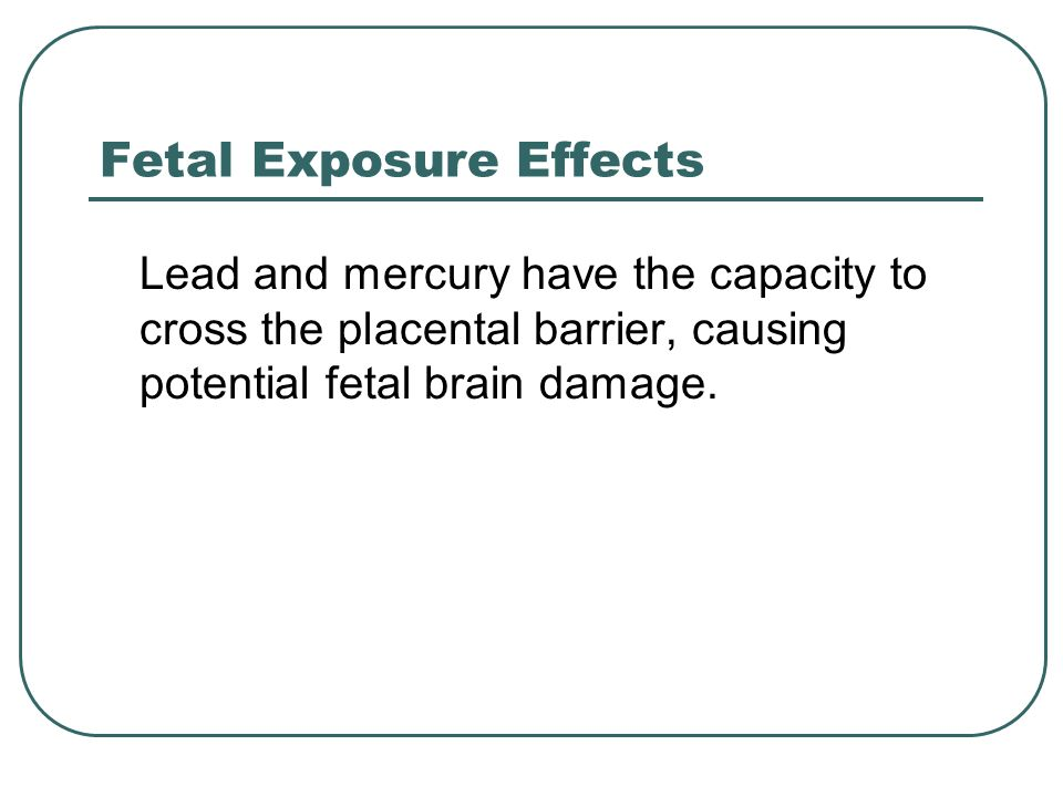 Fetal Exposure Effects