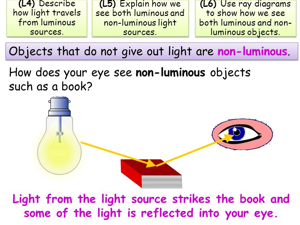 4th grade diagram of the eye images