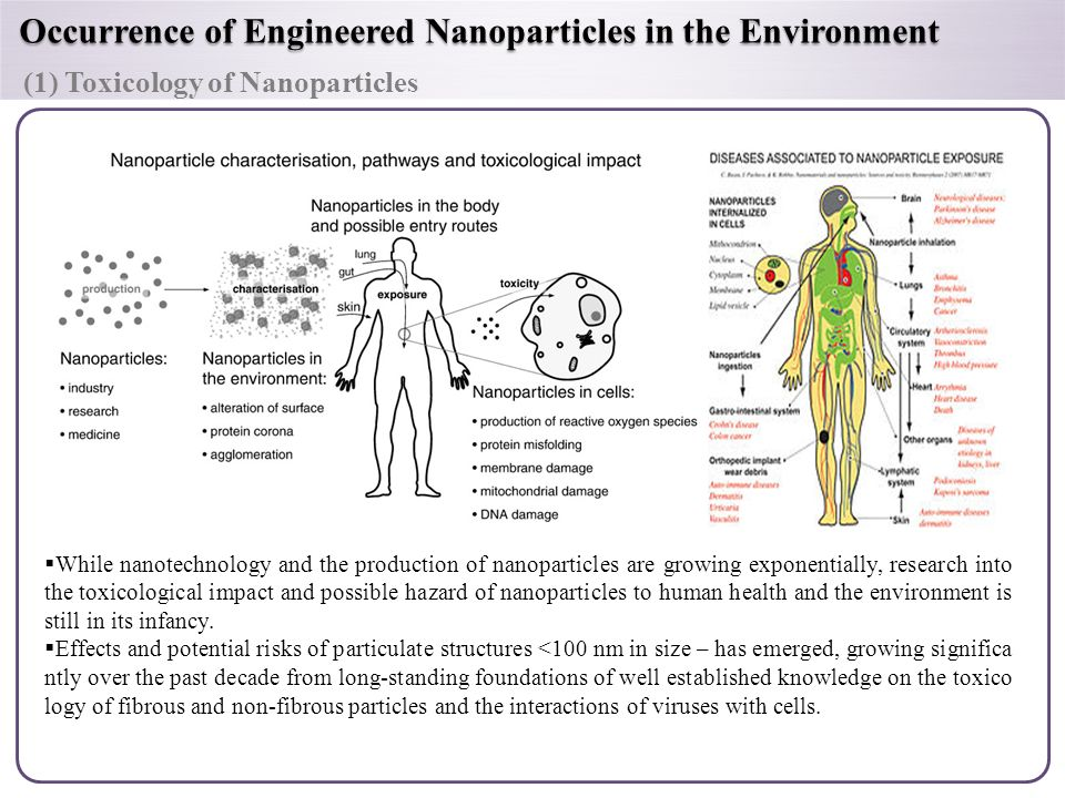 risks of engineered nanoparticles for the environment Silver nanoparticles  risks of engineered nanoparticles in the environment may be low, what we know of the potential impacts of engineered nanoparticles in the.